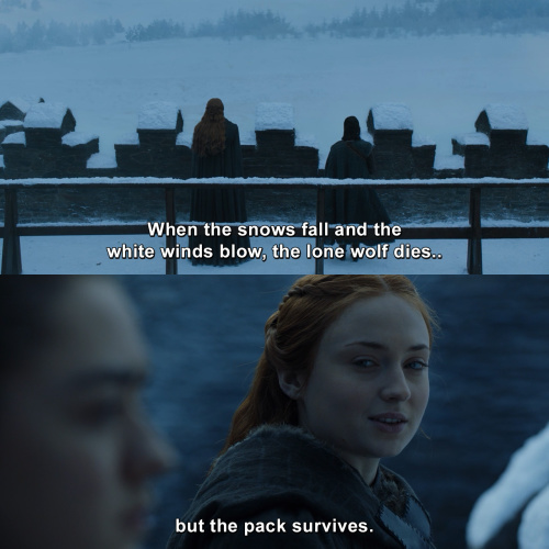 Game of Thrones - When the snows fall and the white winds blow, the lone wolf dies but the pack survives. – Sansa Stark