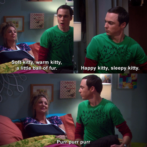 The Big Bang Theory - Soft kitty, warm kitty, a little ball of fur.