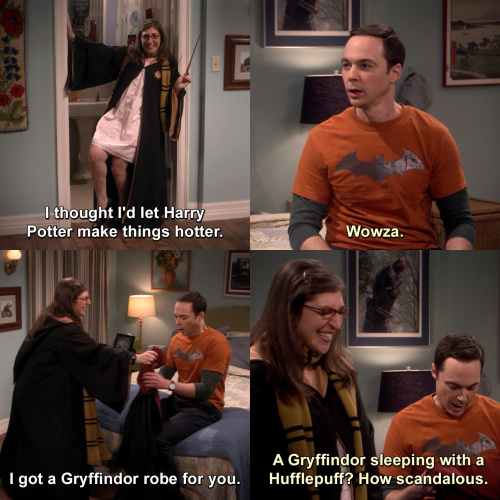 The Big Bang Theory - A Gryffindor sleeping with a Hufflepuff?