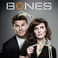 Category Bones