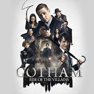 Category Gotham
